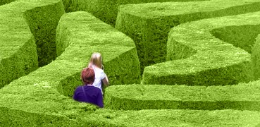 Bilde: Labyrint av grønne hekker.